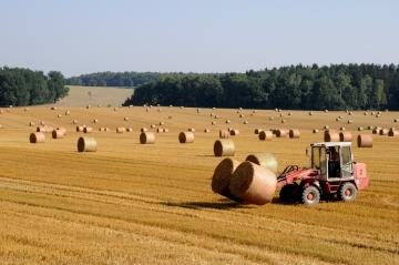 В сельское хозяйство придёт патентная система налогообложения